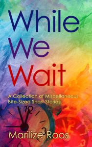 While we wait by Marilize Roos